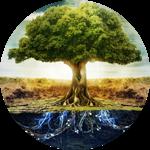hypn_kruh-strom
